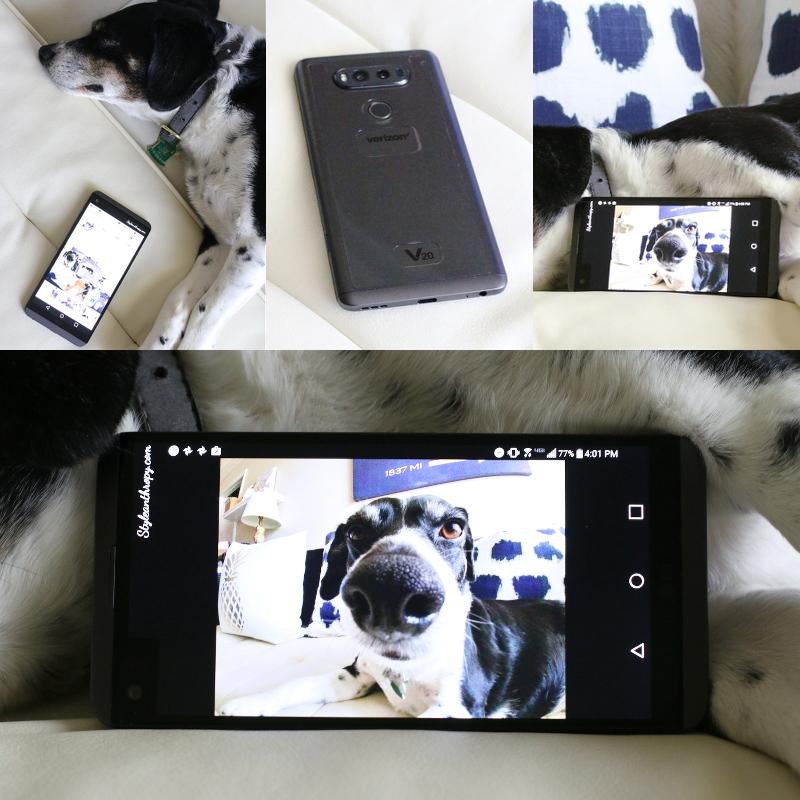 lg-v20-smartphone-verizon-camera-dog-4