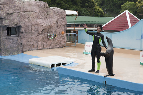 Shimoda Floating Aquarium