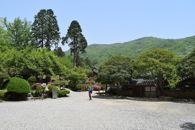 Seonamsa Temple (56)