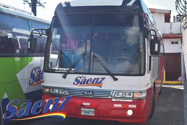 sanezz45