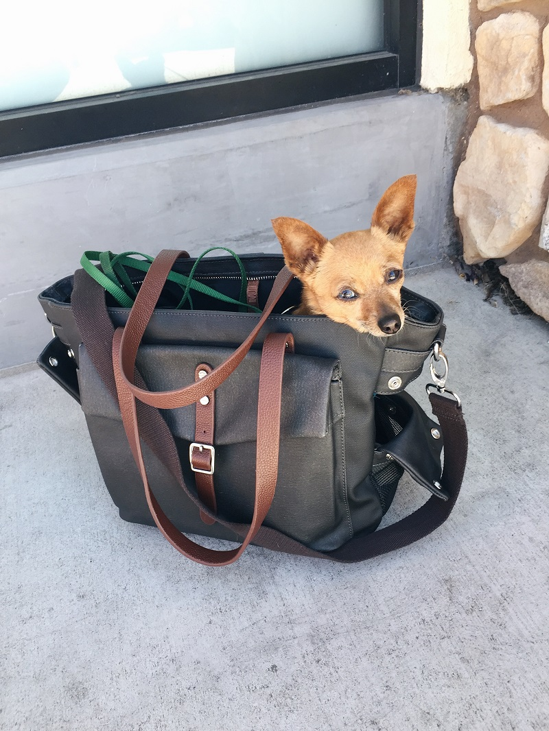 lulu-micropooch-bag