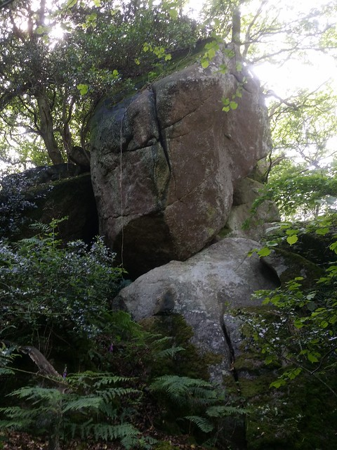 Main outcrop of Trendlebere Tor in the Woods