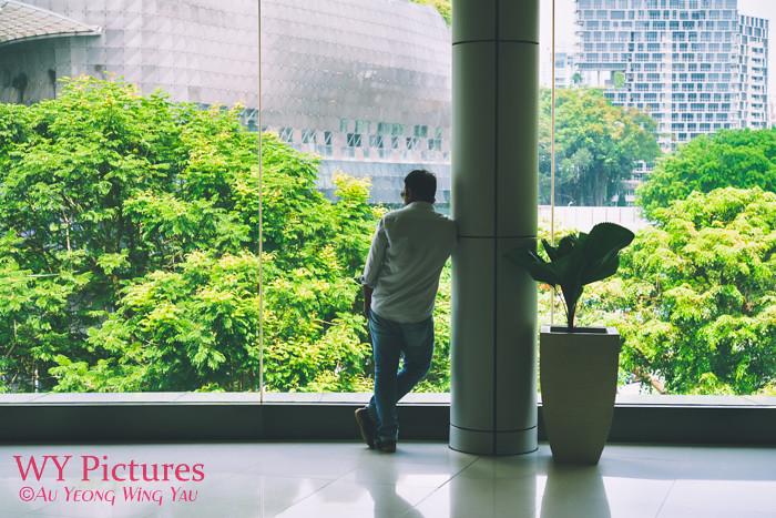 Singapore 2017: Looking At The Metropolitan Garden City