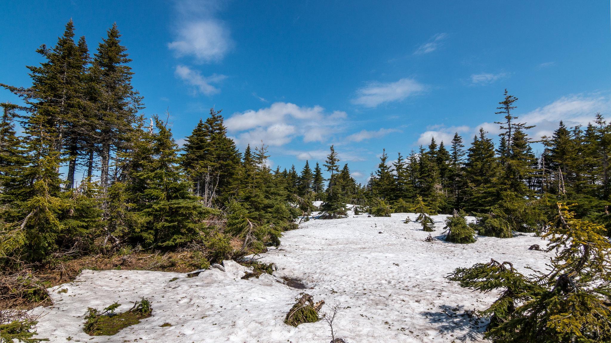 Cap-Breton - Nouvelle Écosse - [Canada]