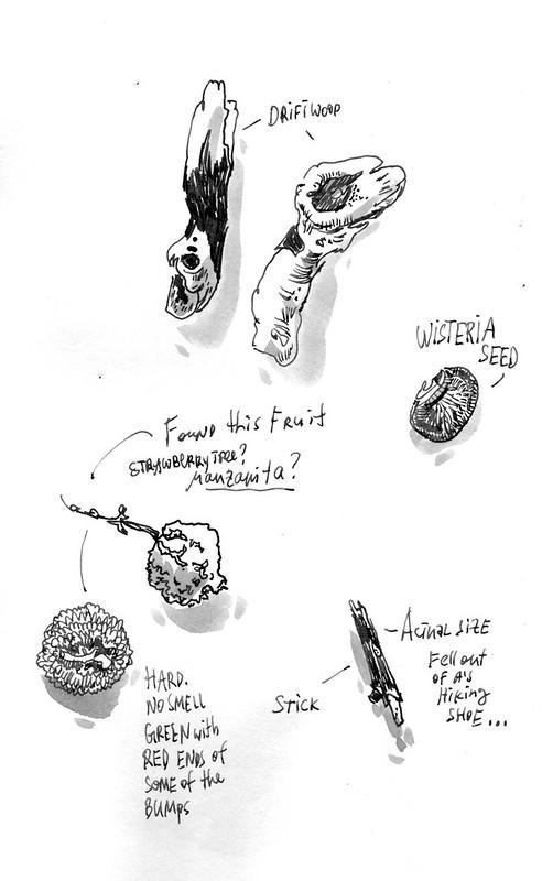 Sketchbook #104: Treasures