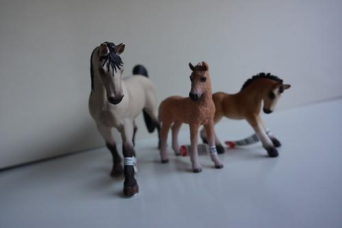 New ponies !