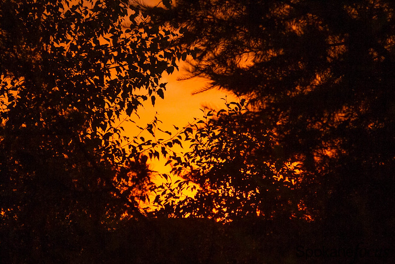 Fiery Sunset-11.jpg