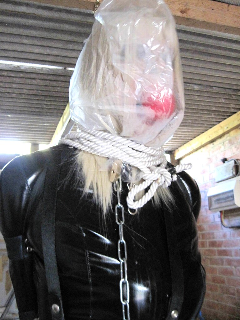 Plastic bag hood bondage she? please?