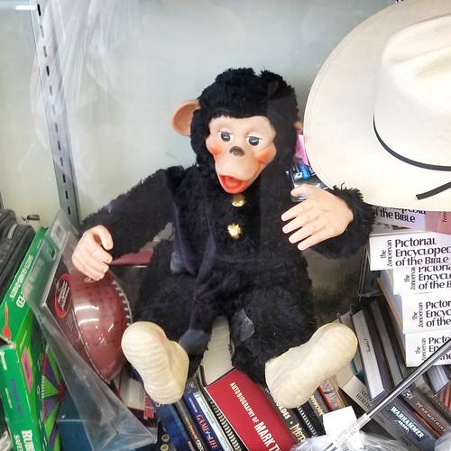 huggy chimp