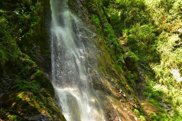 畦ヶ丸 本棚の滝