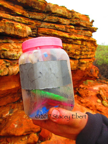 Geocaching in the Australian Outback. From Through the Eyes of an Educator: Go Explore