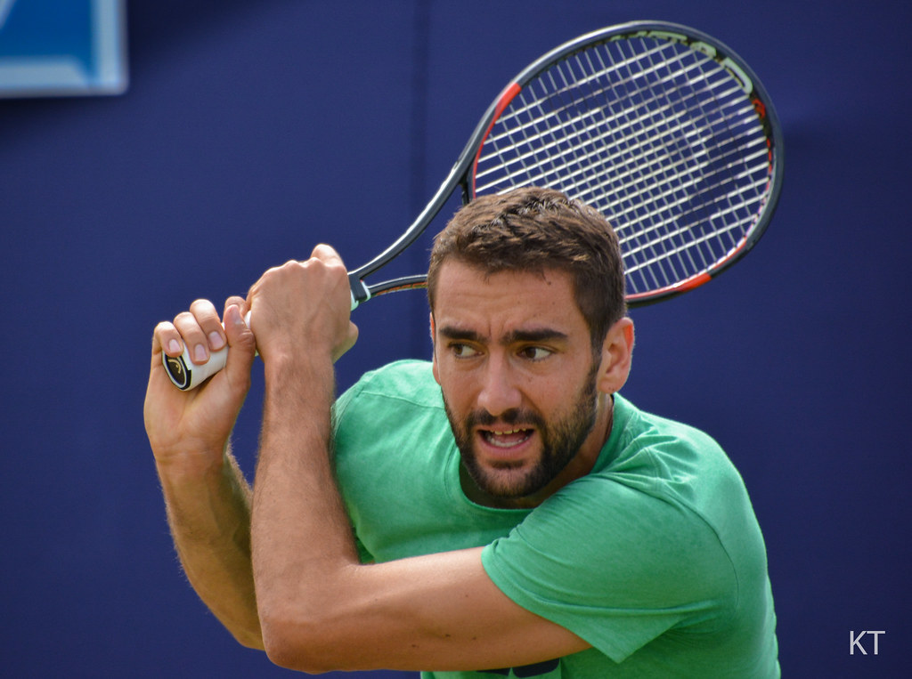 Image result for cilic