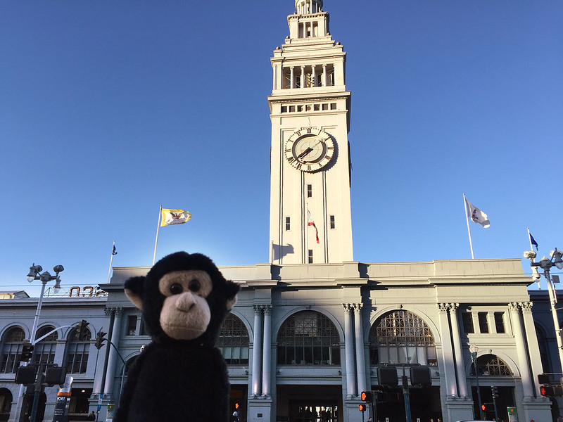 Monkey at the Ferry Building