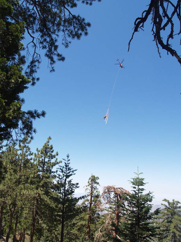 Helicopter removing logs from the National Forest section of the Marion Mountain Trail
