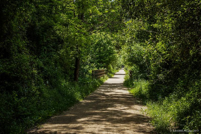 Puente de madera del Camí del Carrilet