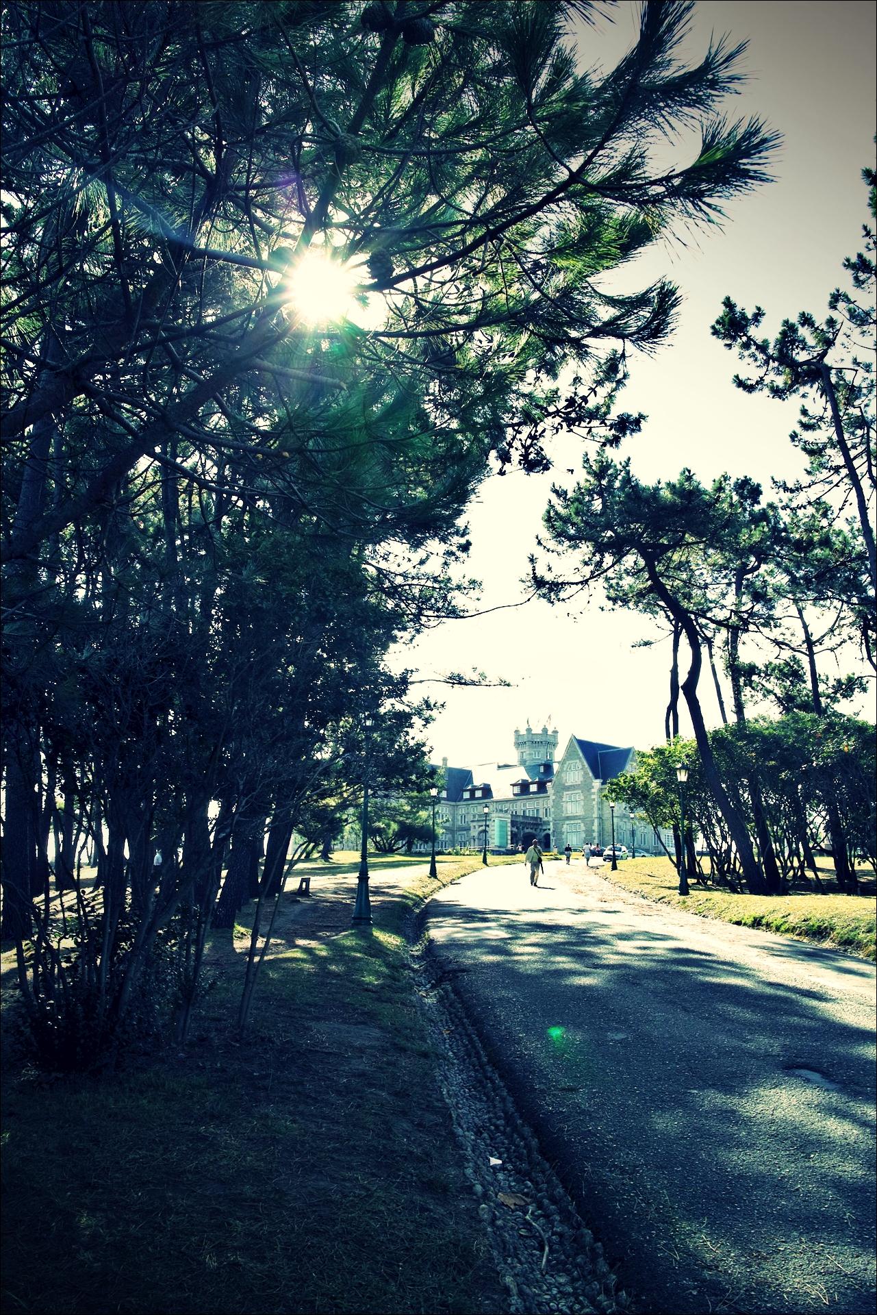 막달레나 궁전 가는 길-'산탄데르 둘러보기(Sightseeing Santander)'