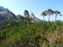 Pinetu Pianu : vue sur Punta Bunifazinca