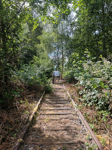 Saturday Afternoon Adventures: Secret Train Tracks