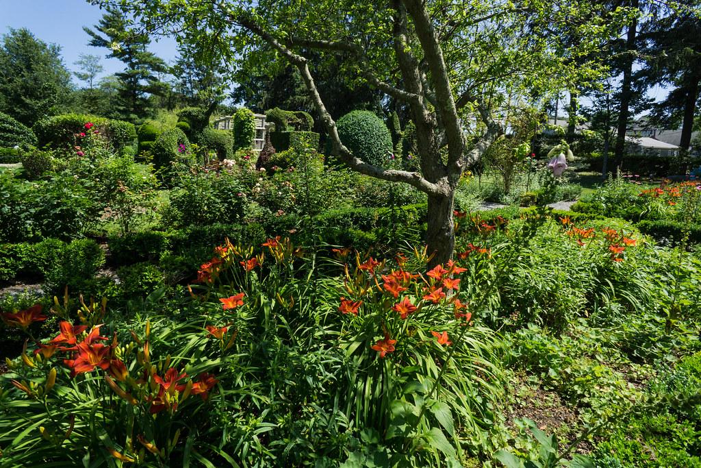 green animals topiary garden portsmouth rhode island by rebeccarocha - Green Animals Topiary Garden
