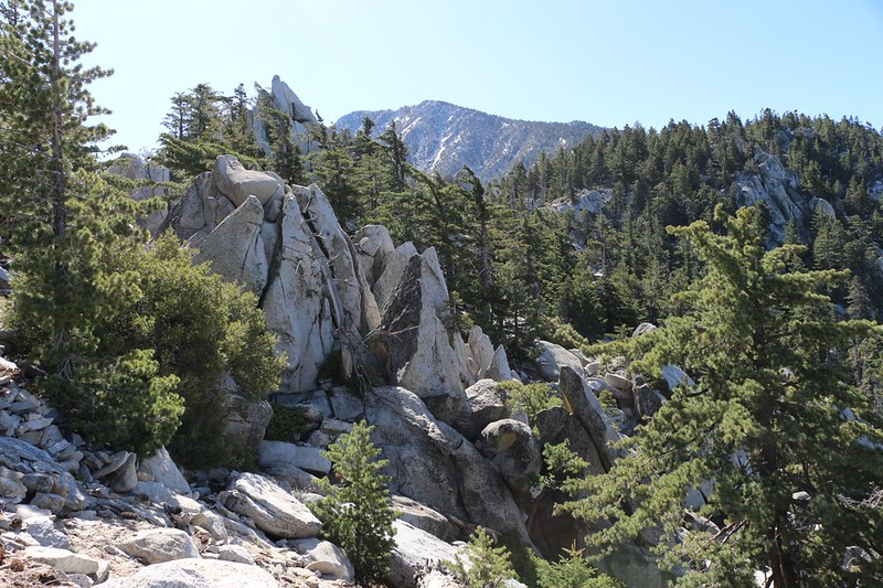Fuller Ridge is made of huge granite spikes and boulders
