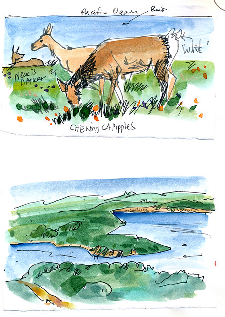 Sketchbook #104: Traveling Locally