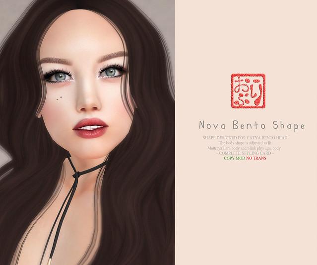 catya bento - Nova Shape