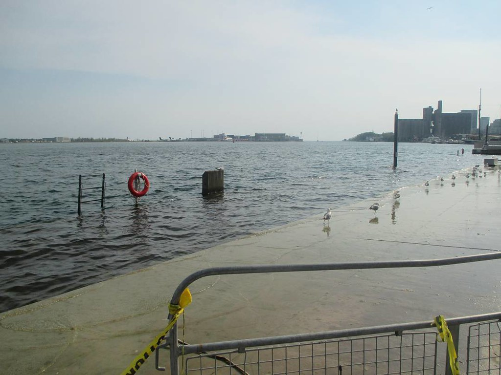 flooded1.jpg