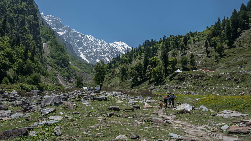 Approaching Dhundi (9,500') campsite