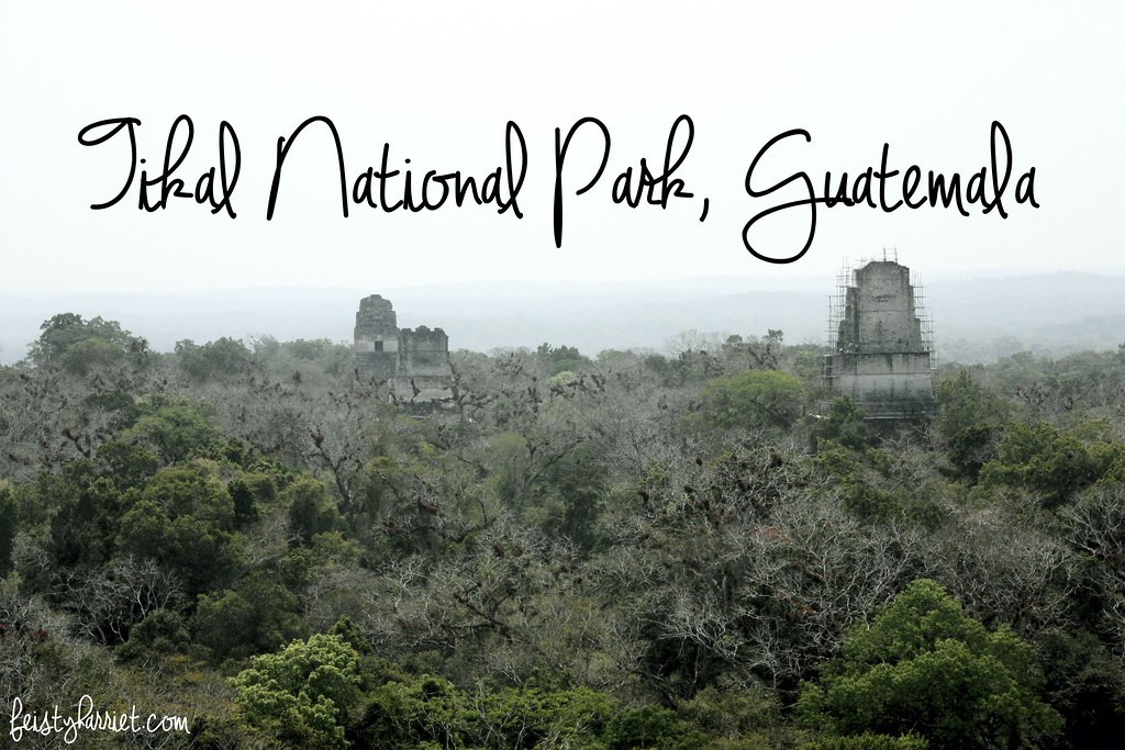 Tikal Guatemala_feistyharriet_April 2017 (16)