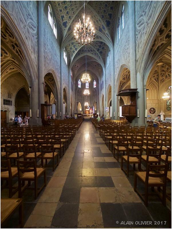 Cathédrale Saint François de Sales à Chambéry 35270285955_2190b1cbfa_b