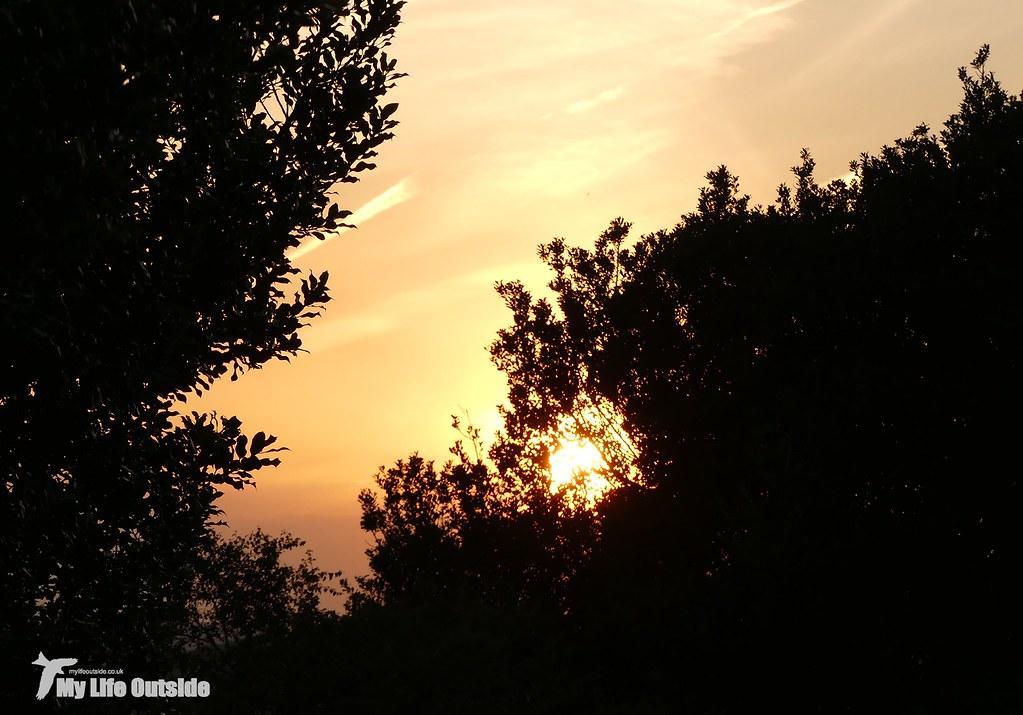 P1080922 - Sunset