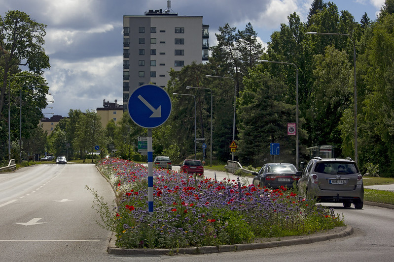 The Traffic Island Flower Bed