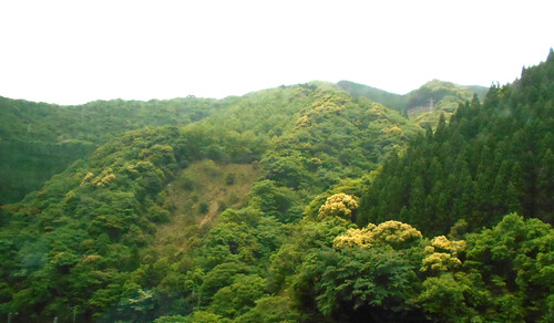 jp-kumamoto-kagoshima-bus (8)