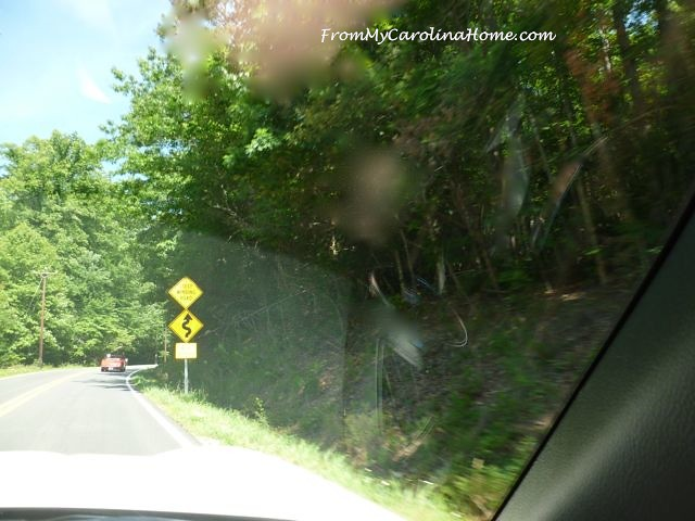 Devil's Whip Drive at From My Carolina Home
