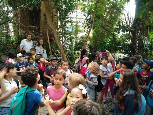 Eerste leerjaar in de zoo