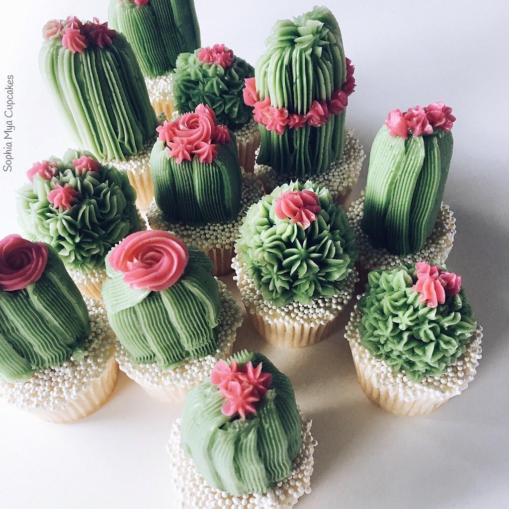 Cactus Cupcakes Sophia Mya Cupcakes Flickr