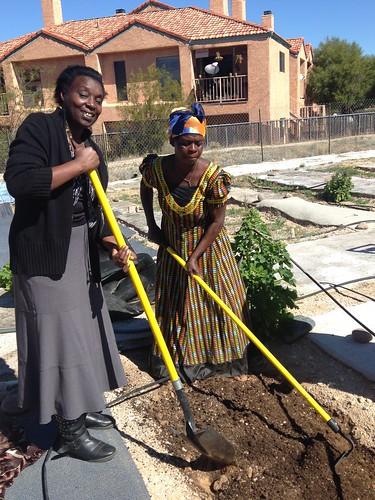 Josepha helping Mwajuma preparing her plot