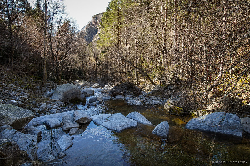 El río Freser desde el Pont de les Ribes