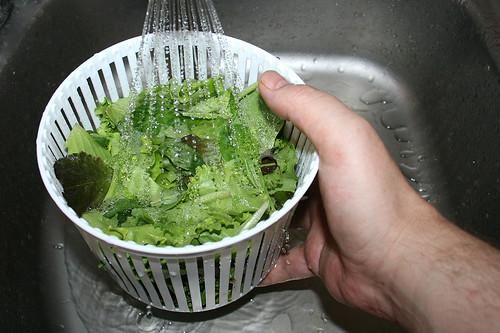 41 - Salat waschen / Wash salad