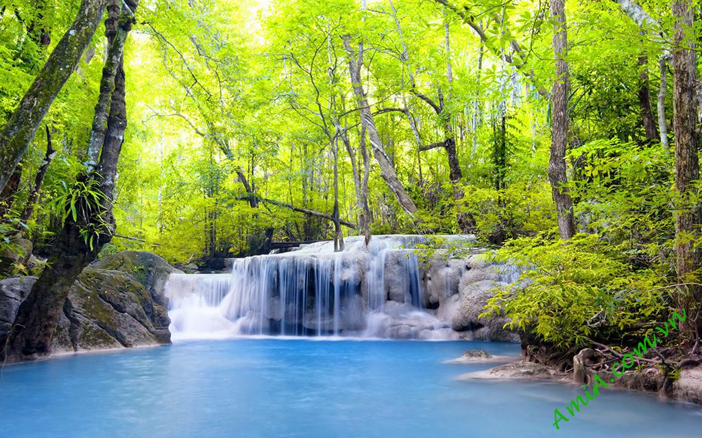 Phong canh khu rung xanh thac nuoc dep
