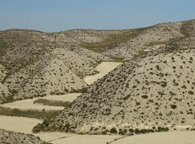 Tierras de Zaragoza