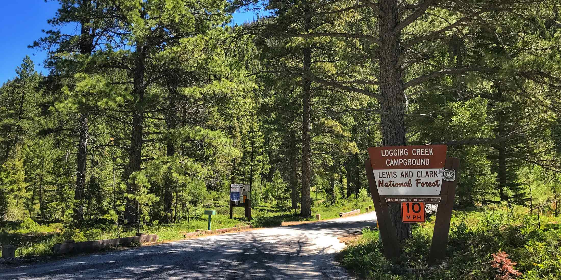 Find all information about Logging Creek Campground located in the Little Belt Mountains, near Belt Montana.