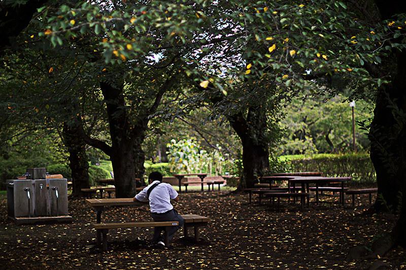 調布市 神代植物園