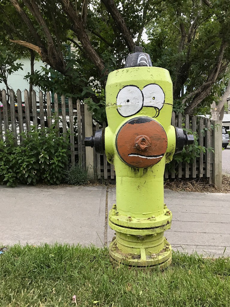 Homer Simpson, Calgary, Alberta, Canada