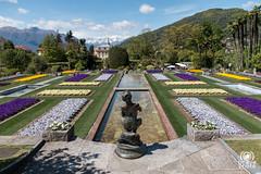 Giardini terrazzati | Giardini botanici di Villa Taranto Pal ...