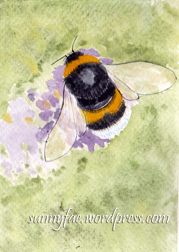 watercolour bumble bee
