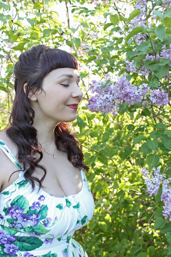 lilacs highland park rochester ny