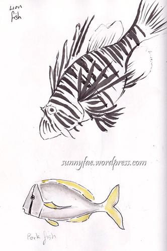 lionfish shetch 1