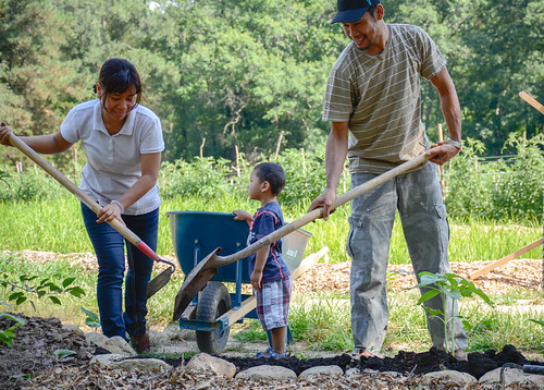 A man, woman and child working on a farm