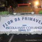 FLOR DA PRIMAVERA - 2017